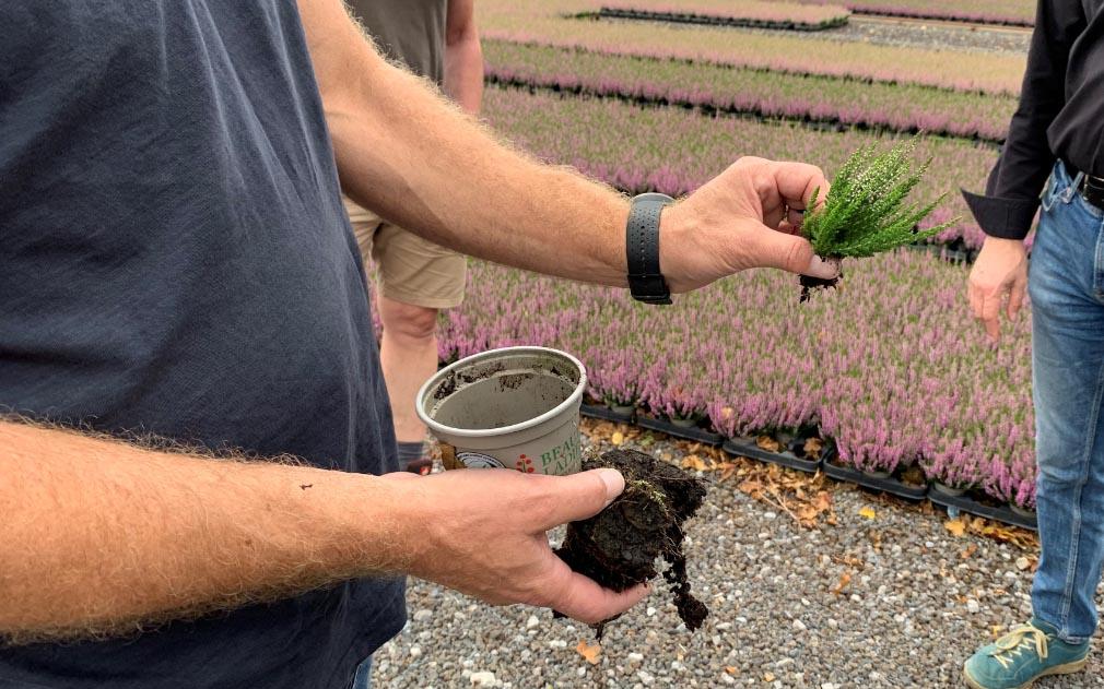 Gebruik van sensoren en meettechnologie in de tuinbouw