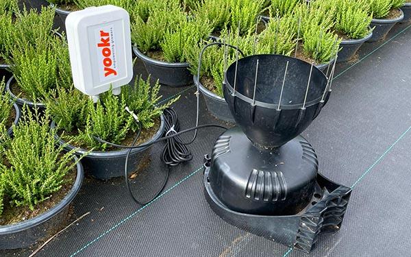 (Pot-)planten en sensoren, een prachtcombinatie!